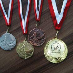 Medale dla Zespołu Szkół w Kobylu